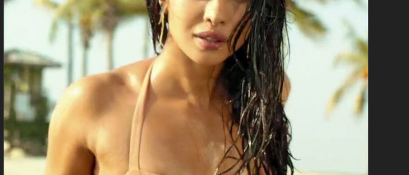 Actress Priyanka Chopra Hot Bikini Photoshoot