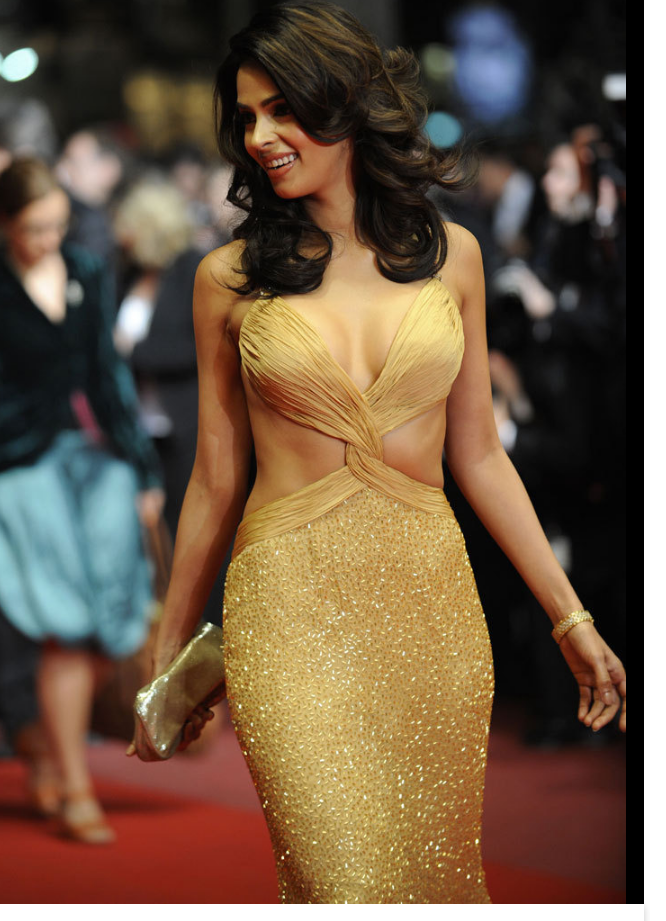 Hot Desi Babes On Cannes Film Festival - More Indian Bollywood Actress And Actors-9596